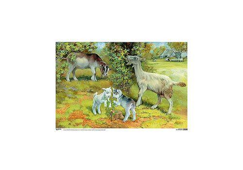 процессе коза с козлятами веретенникова картинки итоге меня